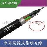 太平洋GYDTA-96B1 96芯單模室外帶狀光纜