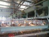 蛋鸭笼子,鸭笼,蛋鸭笼养自动化