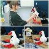 中餐厅赵薇同款复读鸡玩具