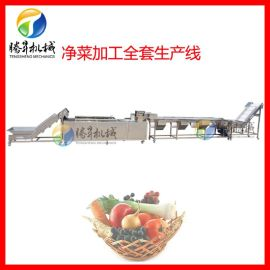 全自动净菜加工设备 大产量西红柿清洗流水线