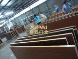 广东门业专注各种材质室内门 地脚线 护墙板 WPC塑木门 PVC套装门定做