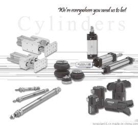 美国纽曼蒂克Numatics仪表用过滤减压阀,89系列仪表用过滤减压阀