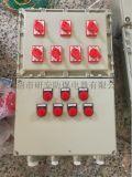 研安100ABXD51防爆動力配電箱5迴路帶總開關IIBT4