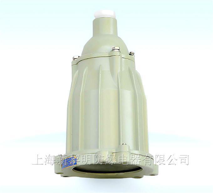 BSD-100防爆視孔燈,LED防爆視孔燈