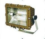 SBF6109免維護節能防水防塵防腐泛光燈