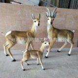 廠家現貨供應動物玻璃鋼雕塑 玻璃鋼藏羚羊 羚羊雕塑