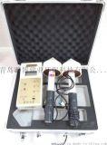 青岛路博ML-91型微波漏能仪