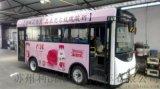 湖南23座電動觀光車,鄉鎮區域學校校車