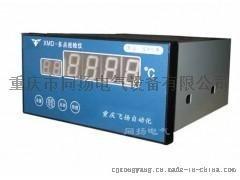XWD智能数字温度巡检仪