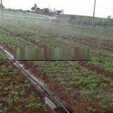 安徽阜陽蔬菜N65噴灌設備廠家