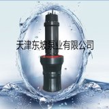 井筒式安装潜水轴流泵厂家现货