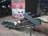 擋邊輸送機調速式 養殖廠飼料輸送機蚌埠