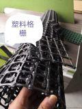 重慶、四川、雲南、貴州土工格柵廠家