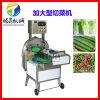 冷水蔬菜前處理設備,大型蔬菜切菜機