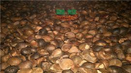 油茶籽烘干设备一次性干燥能力