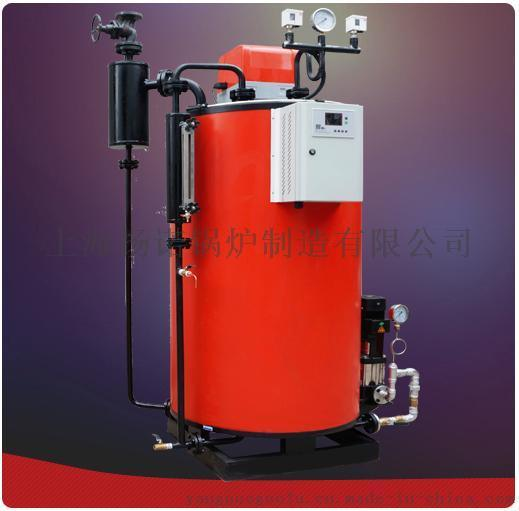 燃氣鍋爐 小型燃氣蒸汽發生器