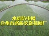 40目抗老化防虫网布筛网布种植网农业用网大棚网覆盖网