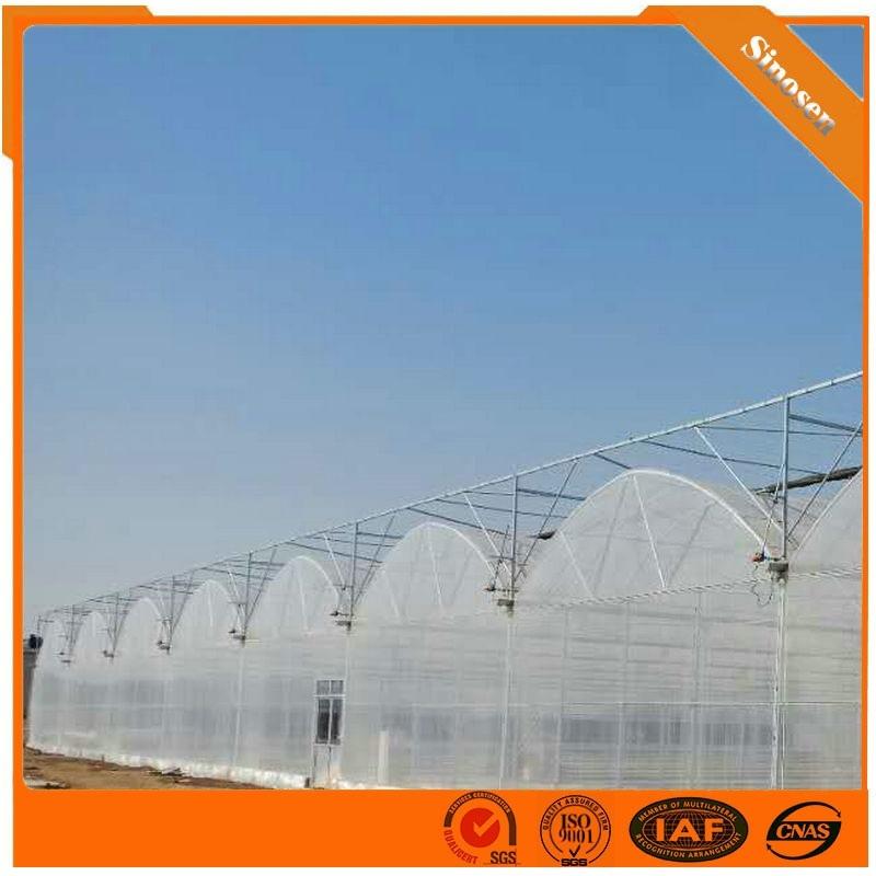 薄膜溫室建設 薄膜連棟溫室建造商