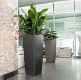 訂製大廳賓館不鏽鋼裝飾花盆 深圳酒店不鏽鋼花盆