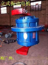 XVL-50-4立式振动电机(VB-20114-W卧式振动电机)