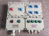 10迴路掛式(IIB,IIC)防爆配電箱