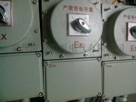 BLK52-25A/4P带漏电防爆断路器
