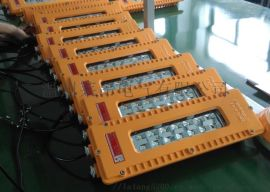 BFE8411_50W应急LED防爆泛光灯