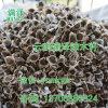 四川辣木籽产品/攀枝花食用种植辣木子