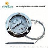 气体液体膨胀式压力式毛细管温度计