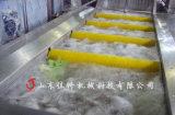 清洗效率快的蘋果清洗機,大型蘋果清洗生產線