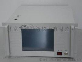 便携式天然气热值分析仪,燃气热值色谱分析仪,天然气色谱仪器