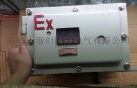 防爆仪表箱钢板焊接防爆仪表箱