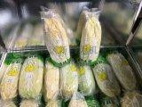 新科力-蔬菜包装机 新鲜叶菜套袋机 水果蔬菜包装机