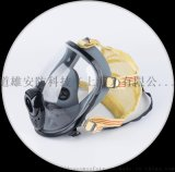 DSM-1道雄全面罩空气呼吸器配件
