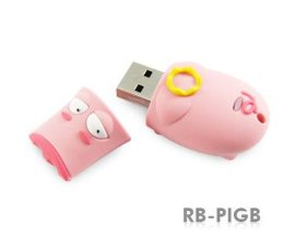 闪存记忆卡(RB-PIG)