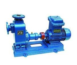 80WZ-30型自吸排污泵, WZ自吸排污泵