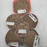 保定喷砂用烘干砂   永顺砂浆用烘干砂促销