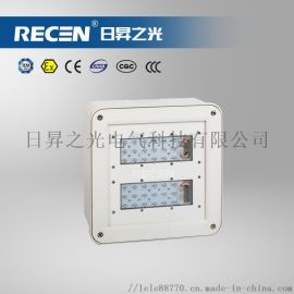 RLELB5160-II LED棚顶灯防护等级:IP65