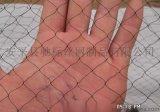 安平驰标专业生产防鸟网、生产葡萄防鸟网、果园防鸟网、全新料聚乙烯网