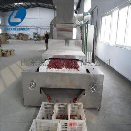 冬枣烘干机#新疆大枣微波烘干设备#智能烘干机