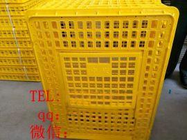 鸡鸭运输笼 家禽运输塑料筐 方形大鸡筐