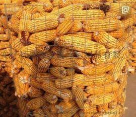 圈玉米专用铁丝网@李各庄圈玉米专用铁丝网厂家现货