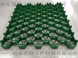 植草格送货上门/山东植草格厂家/绿化植草格生产厂家