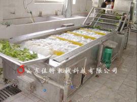 腌制菜脱盐清洗机 脱盐清洗生产线