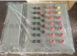 壁挂式钢板焊接防爆动力开关箱