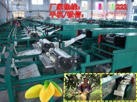海南芒果袋机 哪里有卖质量好的芒果袋机