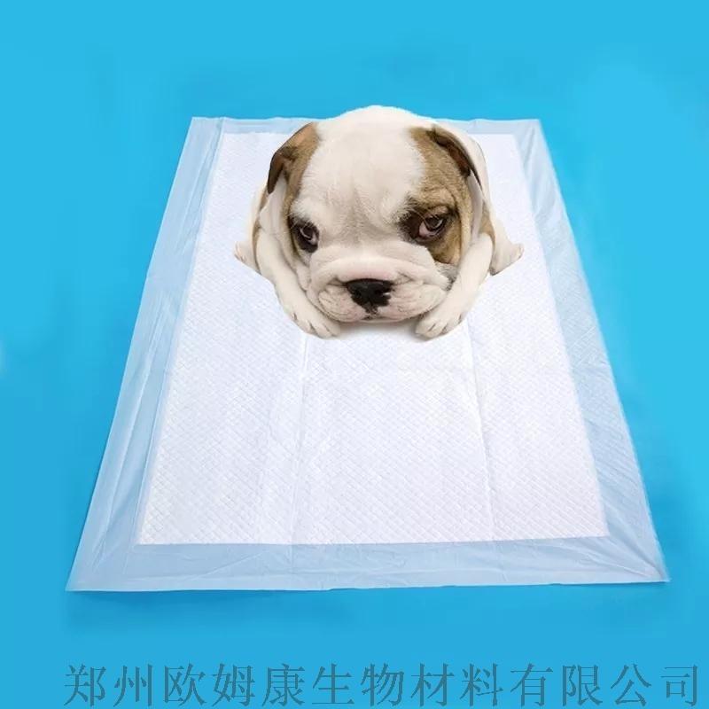 一次性的宠物尿垫也会细菌滋生
