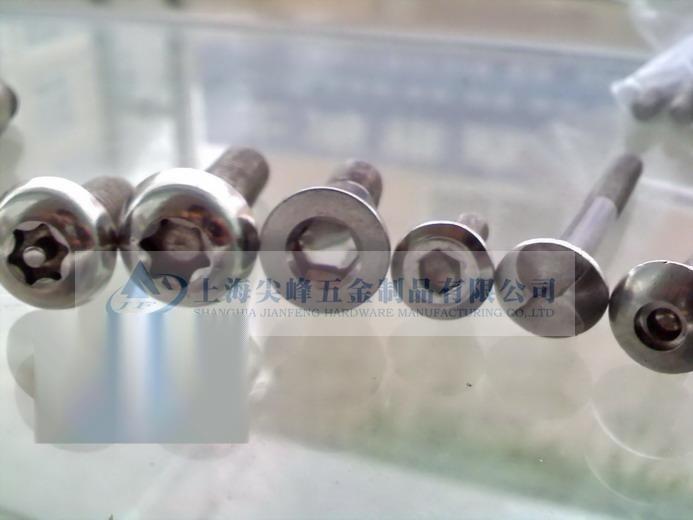 不锈钢防盗螺丝,304不锈钢防盗螺丝,不锈钢防盗螺丝价格