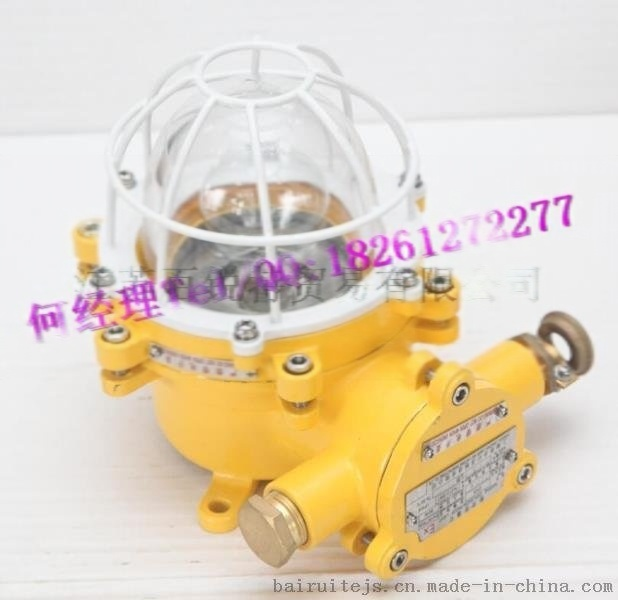 船用白炽防爆舱顶灯CFD3 24V25W/220V 60W CCS证书