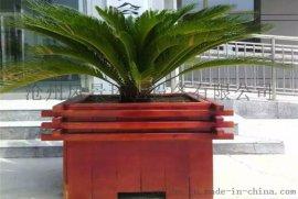 河北沧州风景木制花盆厂家 户外种植花盆 公园街道花箱 园林实木花箱